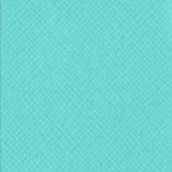 Bazzill Basics Cardstock Forget me not