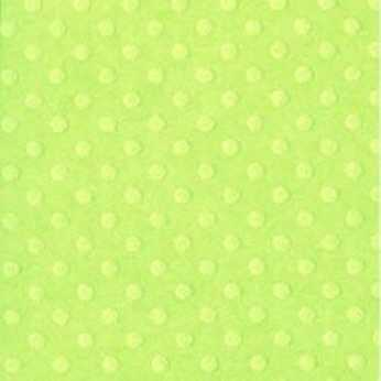 Bazzill Basics Papier Celtic Green