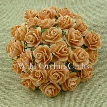 5 Stk. Rosen open roses peach 25 mm