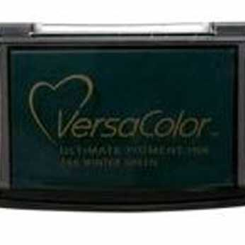 VersaColor Pigment Ink Winter Green